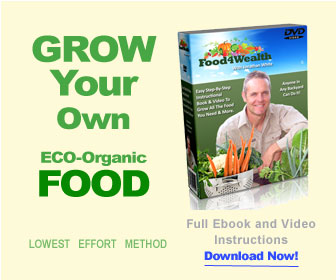 Soil For Raised Garden Beds - Grow Your Own Food